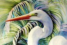 Watercolour  / by Ian Belcher