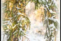 Outdoor pics - ulkokuvia / Some shots from my area  Muutamia kuvia lähimailtani