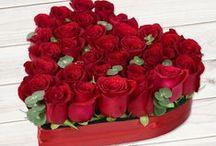 Valentine's Day Collection / Niciun cadou de Valentine's Day nu este complet fara un buchet de flori. Florile de Ziua Indragostitilor sunt un simbol al dragostei, deci nu trebuie sa lipseasca, indiferent care este planul ulterior. Comanda flori de la Floria.