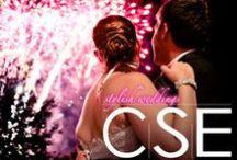 Stylish Weddings 2014