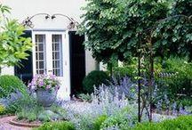 Garden & House / by EAE