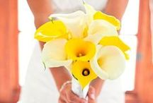 Calla Lily Wedding Ideas / Wedding themes and ideas that feature this exquisite bloom
