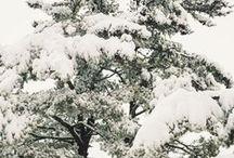 fall & winter / by EAE