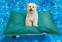 Poolside Pets / Pamper your pets poolside with these fun accessories, perfect for times spent together outside. / by FRONTGATE