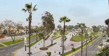 Parques y Plazas / 0