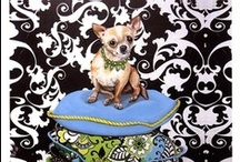 Dog Art Prints / A collection of a variety of different dog art prints from photographs and paintings. There are a wide variety of dogs represented in these art prints, such as Chihuahuas, Labradors, Poodles and many more.  / by Bandaged Ear