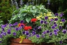 gardening-containers etc