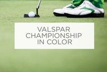 Valspar Championship in Color / The most colorful PGA TOUR tournament in the world. For more information, visit www.valsparchampionship.com.  / by Valspar