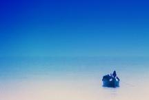 Desert Island Wish List