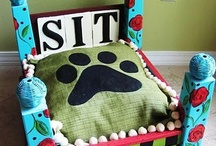 Pets / Dog, Dogs, Cat, Cats, Dog Treats, Dog Houses, Pet Houses, Pet Tips,  / by Scrap-aholic