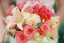 Flowers / by Rebecca Keenan