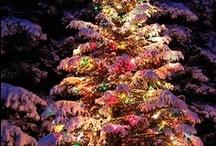 ~ Christmas ~ Winter ~ / by Deanna Butera Repko