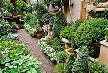 Garden Extras / Floors, Paths, Water Features, Arbors, and all the other beautiful things that make a garden even more beautiful. / by Hands Are For Making