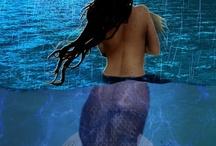 mermaids and shells / by Dottie Bassett