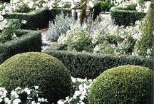 """~ Jardins Blancs ~ / White flowers and silvery-gray foliage reflect the light of the moon, hence, a """"moon garden""""!"""