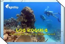 Los Roques / All about Los Roques