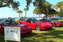 Corvettes and Car/Truck Shows