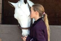 Home is Where Your Horse Is / by Jennifer McBrayer