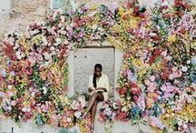 FLORAL INSTALLATIONS / Amazing floral backdrops, creative suspending flower displays, and stunning floral installations that leave us starry eyed.