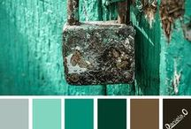 COLORPALETTE / Collection of color palette.