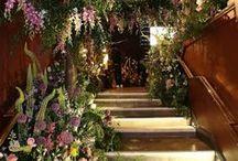 Planten & Bloemen | ELLE Decoration NL
