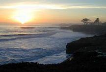 Santa Cruz Living