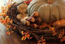 Falling for Fall / by Molly Severtson