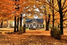 Fall: My Favorite Season of All! / by Jackie M