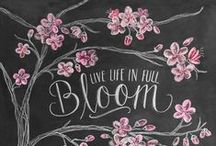 Bloom / by AmberVues