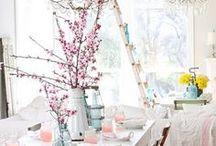 {home} spring