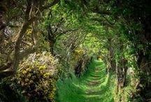 Magic Places on Earth