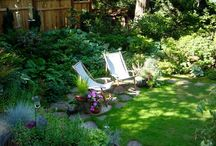 Shade Garden Loveliness / by Traci Herger