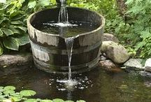 Water in the Garden / Water features, fountains, ponds, creeks, brooks, etc! / by Jessica Talstein