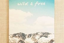 Wild and Free / A place for my nostalgia... Summer days and nights in the mountain for camp!