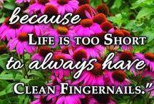 Garden Quotes & Fun