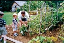 Gardening with the kids / by Caitlin Morgan