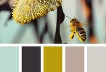 design :: color palettes / by Lynsey Struthers