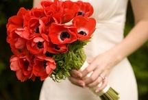 Arrangements / Great ideas for bouquets and arrangements.