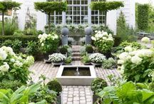 Dream Home - Gardens & Green / by Jacquelyn Purvis