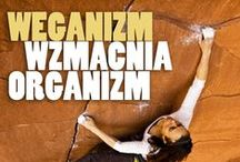 Vegan Athletes & Lifestyle / Photos and articles about vegan athletes. Yes you can!