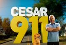 Cesar Millan TV / Cesar's latest television show, Cesar 911 airs on Nat Geo WILD with Season Two set to debut in early 2015.
