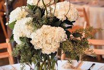 Melissa's Wedding! / by Melissa Schrader