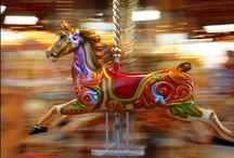 Carousel / by Sheila Gibson