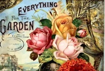 everything for the garden / by Dee Gordon