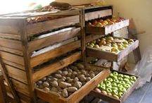 Food Storage & Oogst Bewaren / Oogst bewaren... groenten en fruit bewaren om er langer te kunnen van genieten. Tips voor een handige voorraadkast.