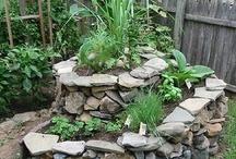 Kruiden in de tuin - buiten / Zelf kruiden zaaien en planten in je eigen tuin. Of op je terras in potten.