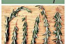 Herbs & healing / Kruiden gebruiken om gezonder te worden en kwaaltjes aan te pakken - Herbs to use for Health and Healing -