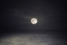 moonglow / by Diane Cox
