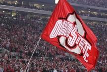 Ohio State Buckeyes / by Christine Spohn