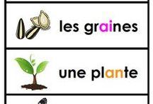 plantes & la terre gr1 (avril)